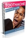 toothache survival guide cover image